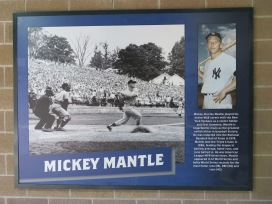 Mickey Mantle was born and raised in northeastern Oklahoma, and made his mark as a member of the New York Yankees.
